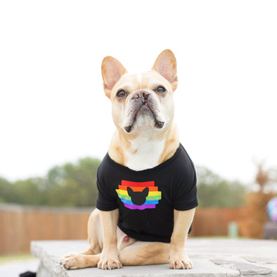 Rainbow With Frenchie Head