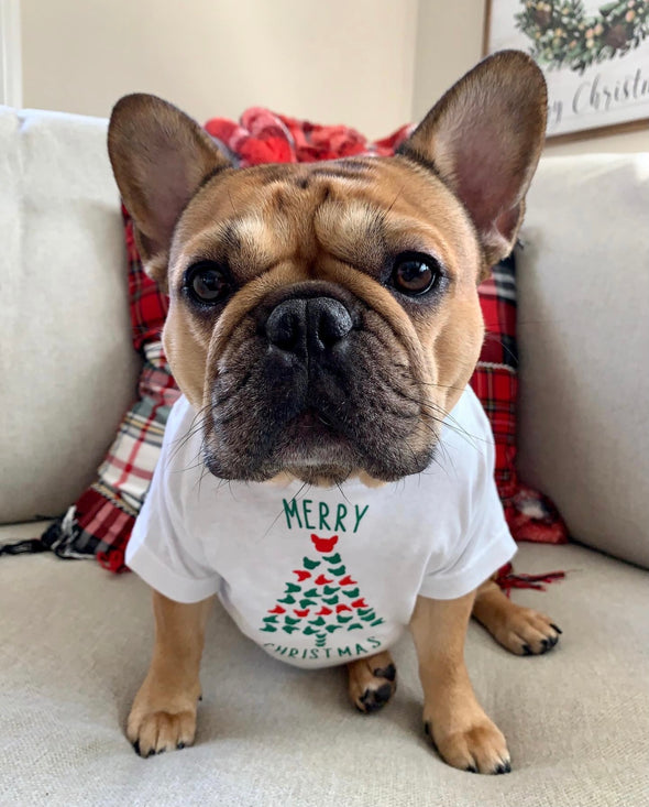 Merry Christmas - Frenchie Style