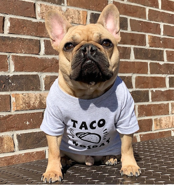Taco TWOsday/#cleftstrong Tee