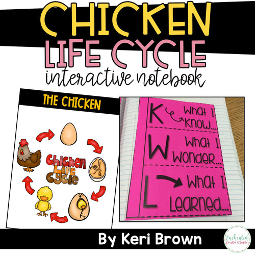 Chicken Life Cycle Interactive Notebook