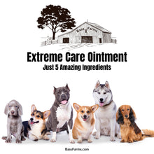 Load image into Gallery viewer, Extreme Care Ointment {2oz}