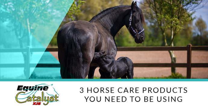 3 Horse Care Products You Need To Be Using