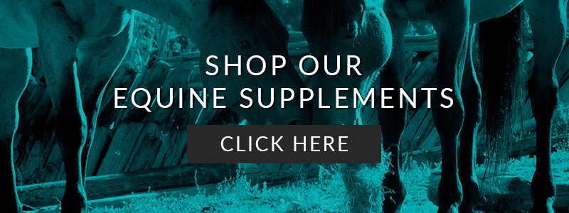 Shop Our Equine Supplements Here
