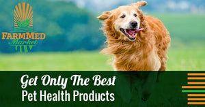 Get Only The Best Pet Health Products