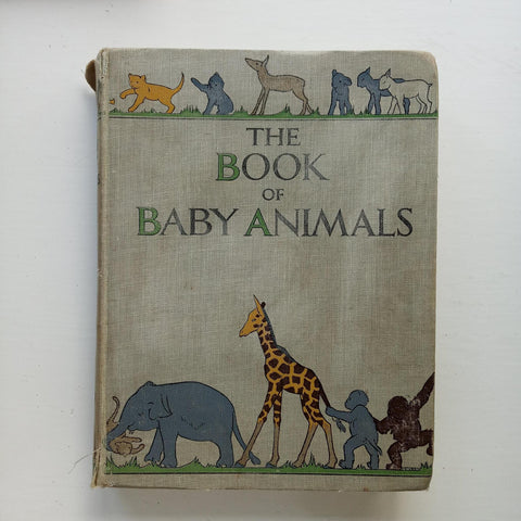 The Book of Baby Animals by Ethel Talbot