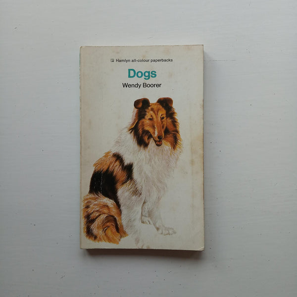 Dogs by Wendy Boorer