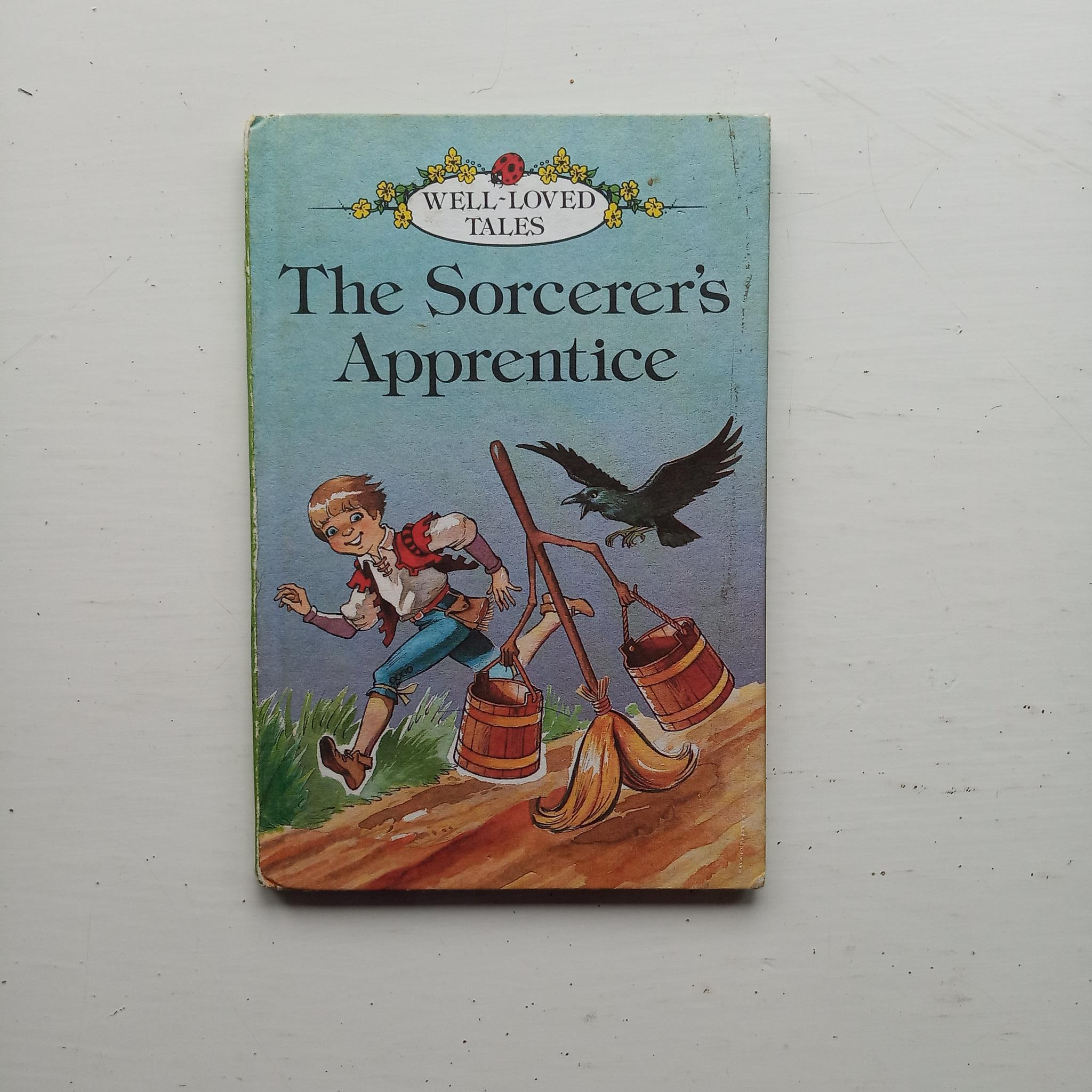 The Sorcerer's Apprentice by Anne McKie