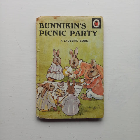 Bunnikin's Picnic Party by A. J. MacGregor