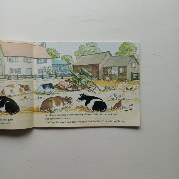 Tim Mouse Visits the Farm by Judy Brook