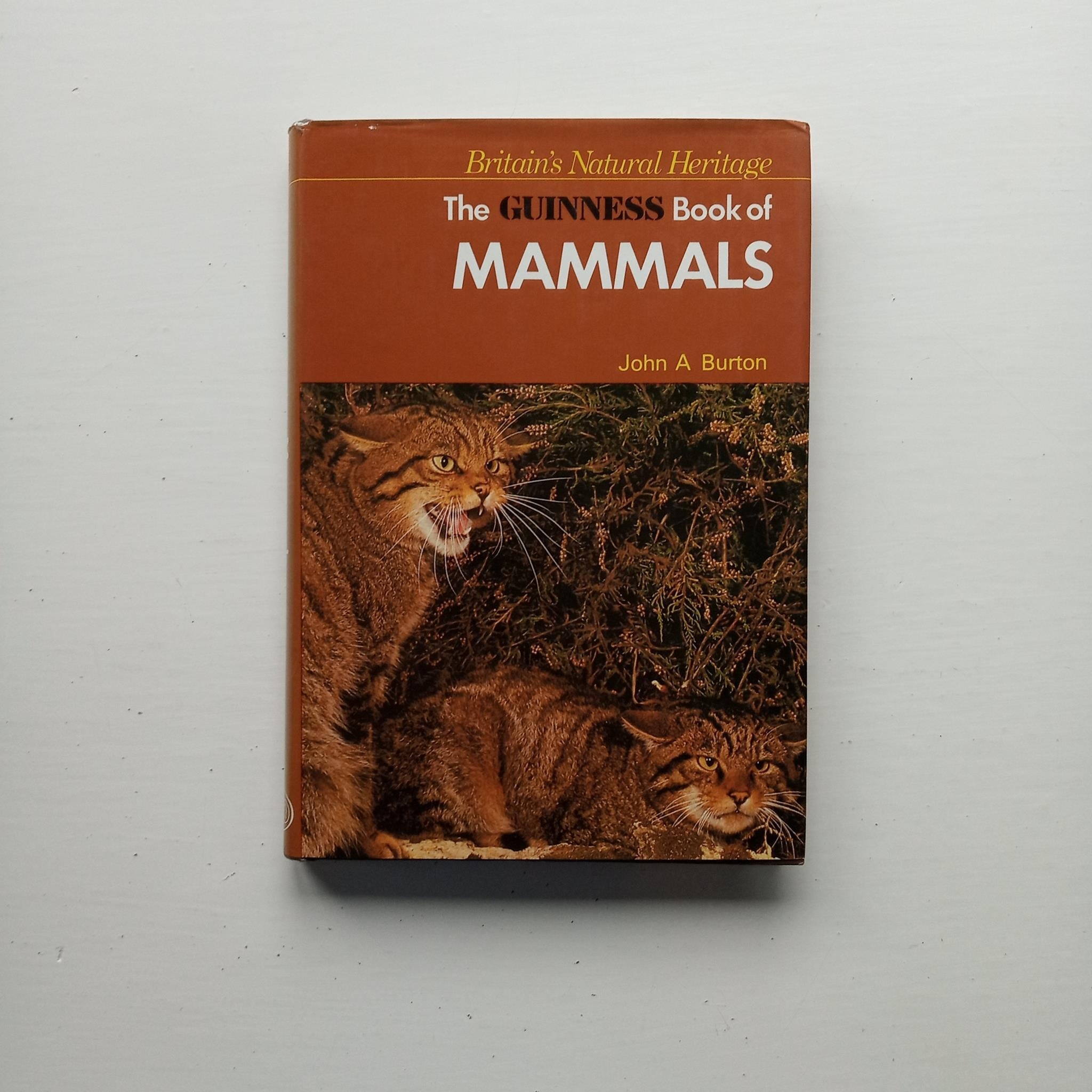 The Guinness Book of Mammals by John A Burton