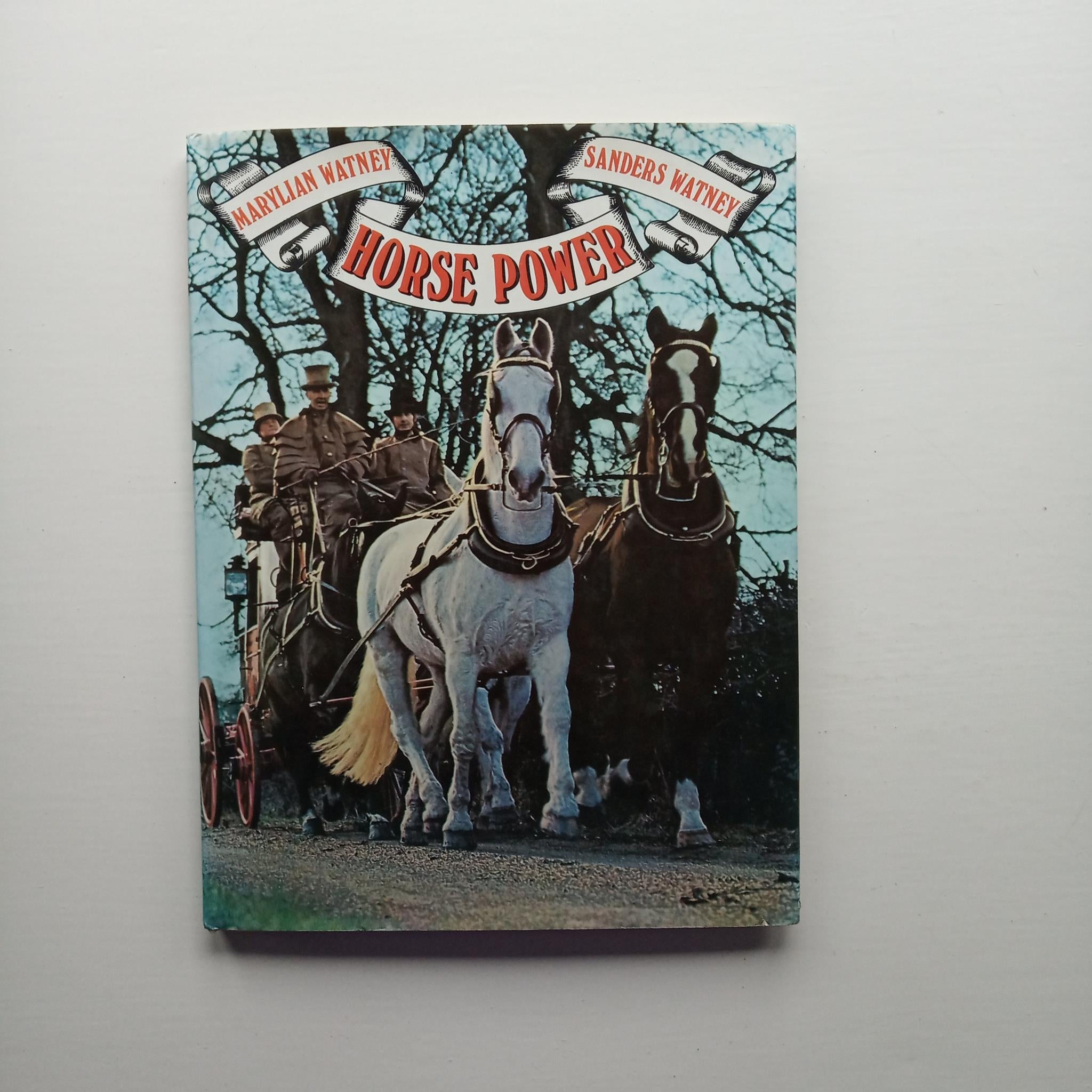 Horse Power by Marylian and Sanders Watney