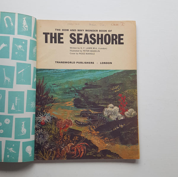The How and Why Wonder Book of The Seashore by G. F. Lamb
