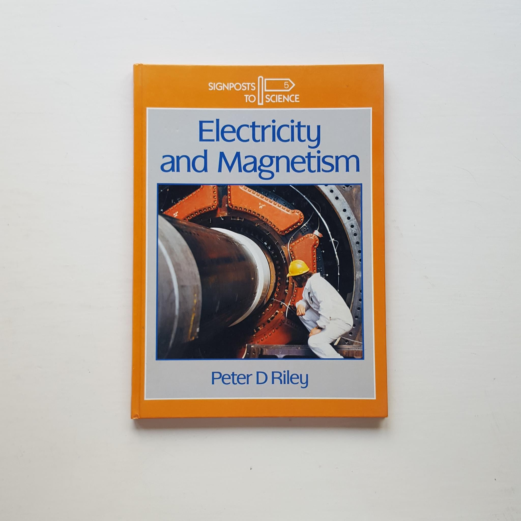 Electricity and Magnetism by Peter D Riley