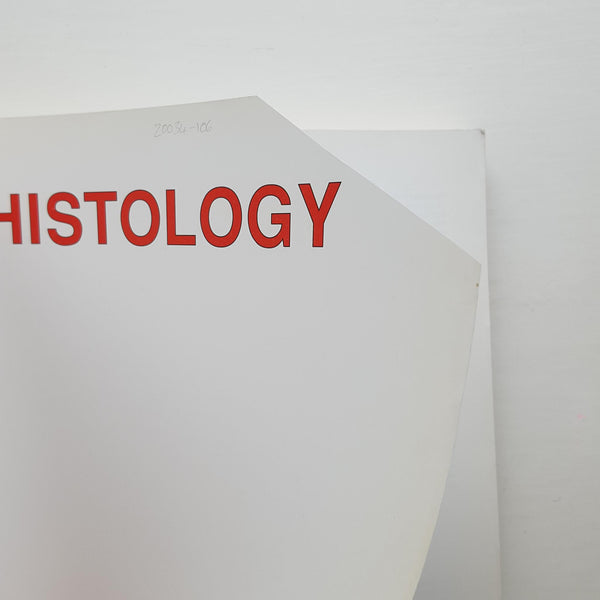 Histology by Alan Stevens and James Lowe