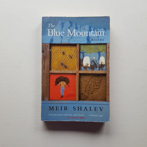The Blue Mountain by Meir Shalev