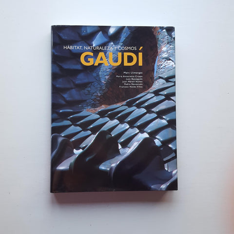 Gaudi by Marc Llimargas