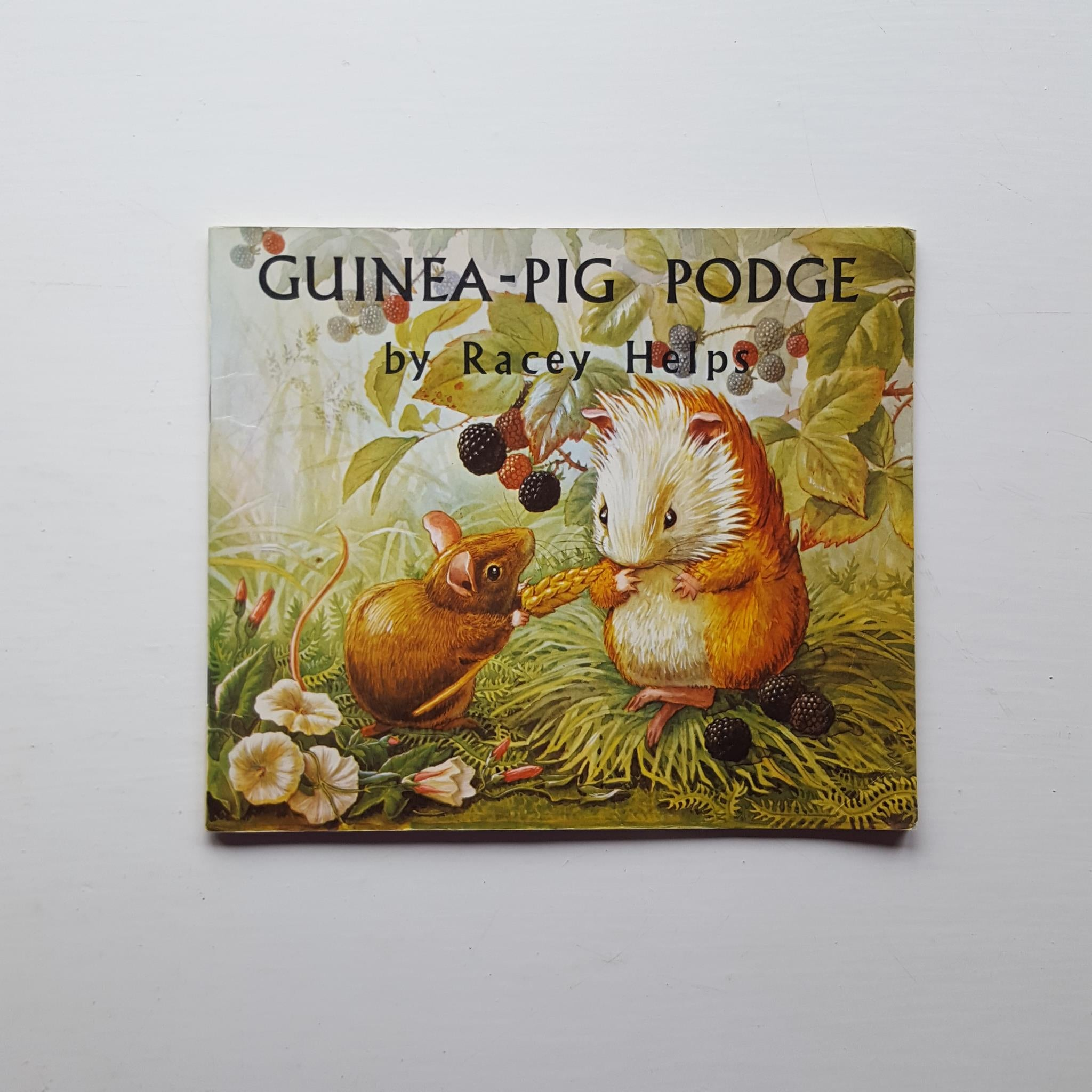 Guinea-Pig Podge by Racey Helps