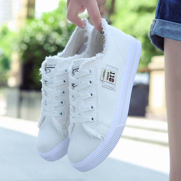 A Casual Canvas Shoes