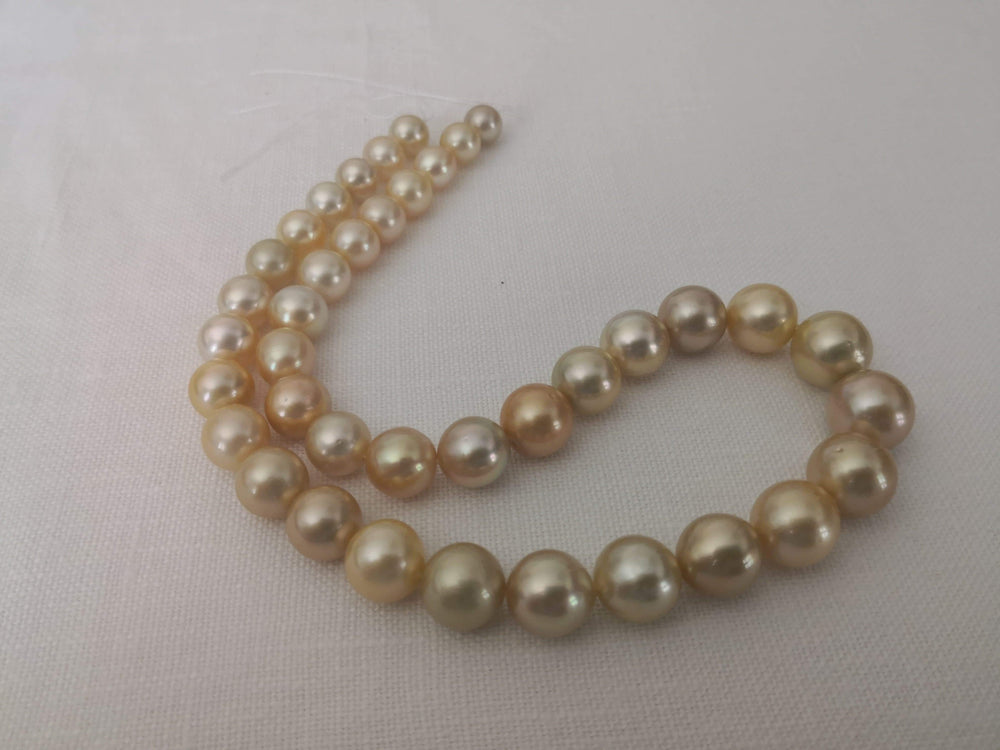 Deep Golden Color South Sea Pearl Strand Round Shape 9-14 mm