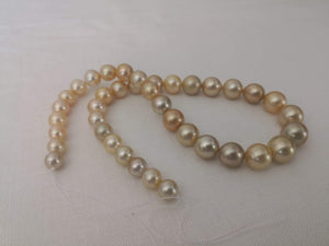 Load image into Gallery viewer, Deep Golden Color South Sea Pearl Strand Round Shape 9-14 mm