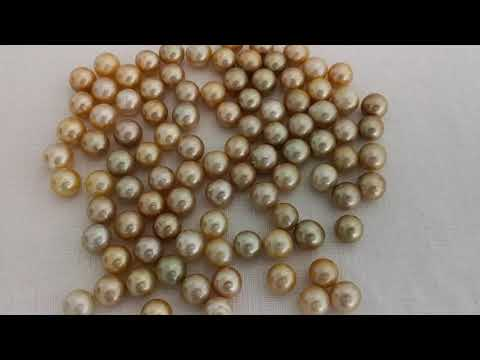 Load and play video in Gallery viewer, 12-13 mm Golden Round Loose South Dea Pearls