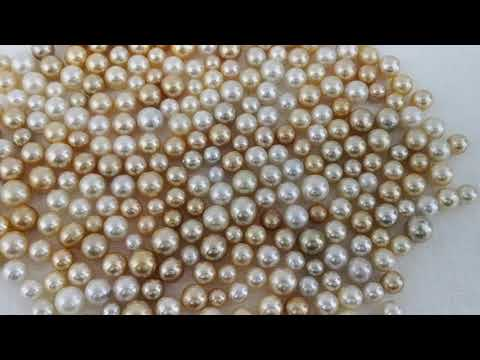 Load and play video in Gallery viewer, Loose South Sea Pearls Natural Colors, Size 10-15 mm, Round Shape