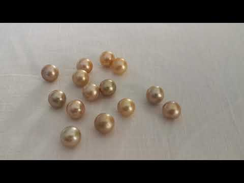 Load and play video in Gallery viewer, Deep Golden South Sea Pearls 12-13 mm Round Shape