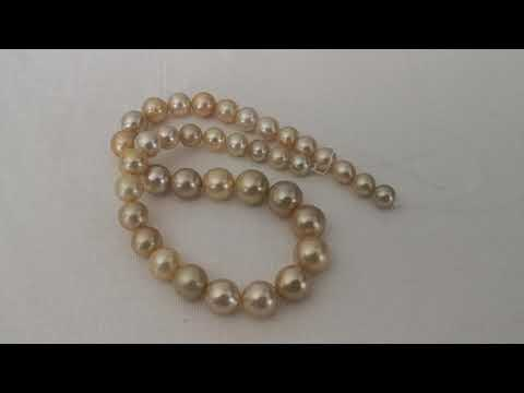 Load and play video in Gallery viewer, Deep Golden Color South Sea Pearl Strand Round Shape 9-14 mm