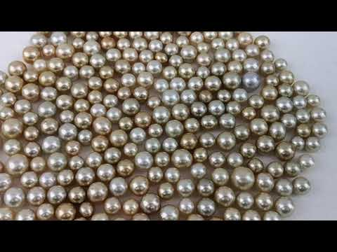 Load and play video in Gallery viewer, Loose South Sea Pearls Natural Color, 12-15 mm, Round Shape