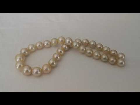 Load and play video in Gallery viewer, South Sea Pearl Strand 11,80-14 mm Golden Natural Color Round
