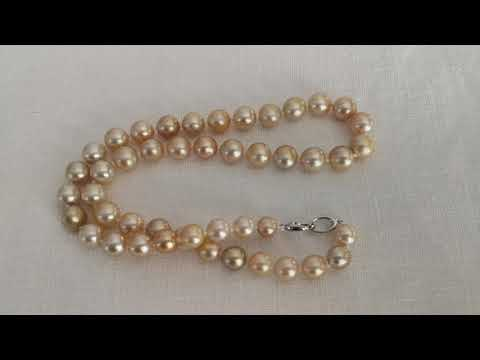 Load and play video in Gallery viewer, Deep Golden Color South Sea Pearl Choker 8-10 mm