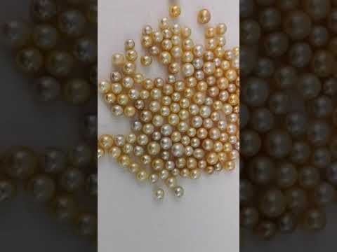Load and play video in Gallery viewer, Loose South Sea Pearls Natural Color, 10-14 mm, Round Shape