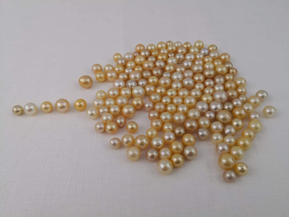 Loose South Sea Pearls Natural Color, 10-14 mm, Round Shape
