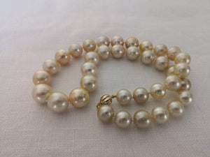 Laden Sie das Bild in den Galerie-Viewer, Necklace of Golden South Sea Pearls Narural Color and Luster