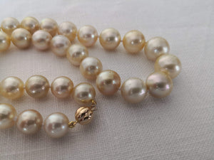 Necklace of Golden South Sea Pearls Narural Color and Luster