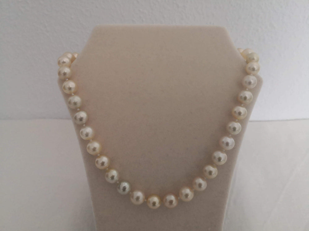 South Sea Pearls, Round, High Luster and Natural Color 8-11 mm