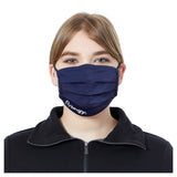 Pleated Reusable Masks