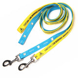 Flat Polyester Pet Leash - Apartment Promotion