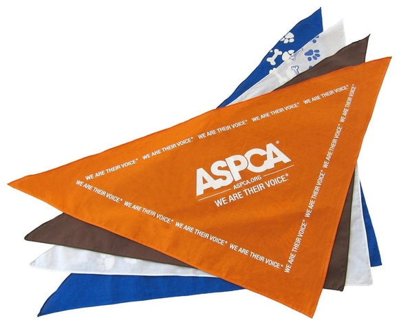 Large Pet Bandana - Apartment Promotion