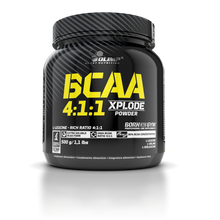 Load image into Gallery viewer, BCAA  4:1:1 XPLODE POWDER 500G.
