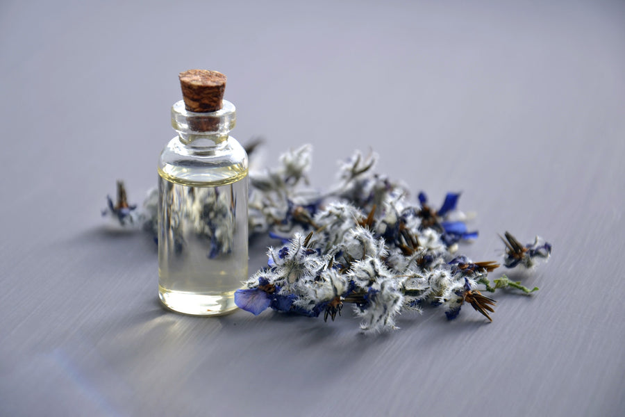 6 Tips on the Art of Choosing Essential Oils for a Blend