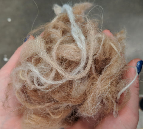 alpaca wool instead of merino wool