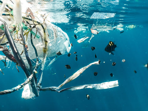 secondary microplastics found in the ocean