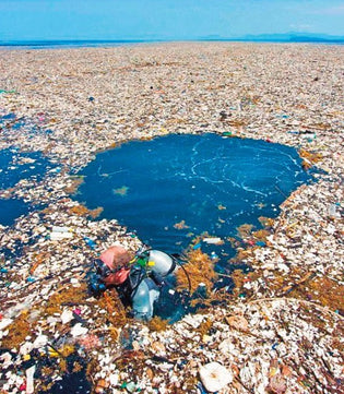 Great Pacific Garbage Patch is the world's largest collection of marine