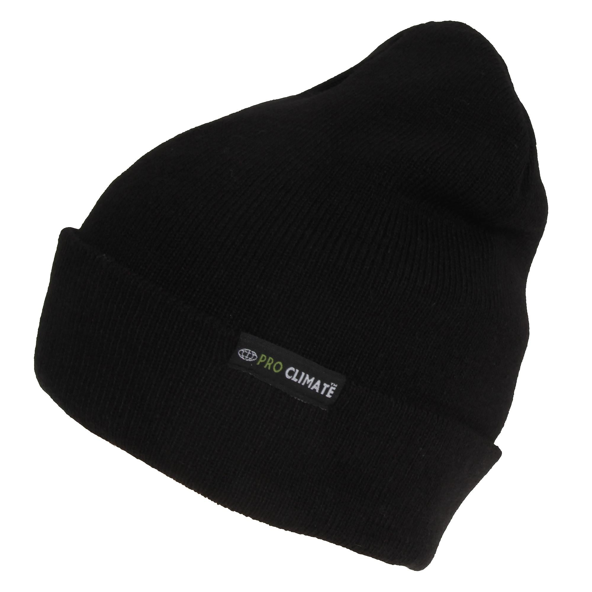 black  beanie  hat  thinsulate