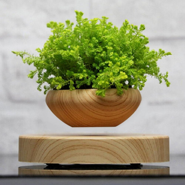 Wooden Levitating Planter