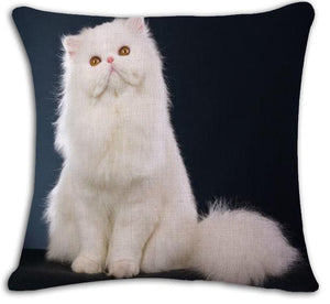 Collection housse de coussin chat moderne45x45cm