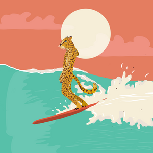 Cheetah Surfing