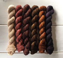 Load image into Gallery viewer, Shades of Brown Mini Skein Set - Lagniappe Sock