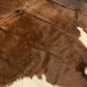 medium brown, dark brown and white Watusi cowhide